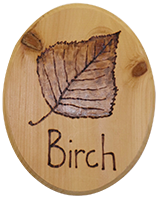 wood sign with the word Birch and leaf burned in